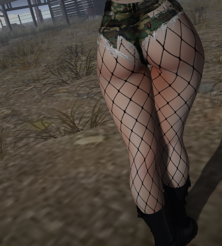 Secondlife Picture_007.png