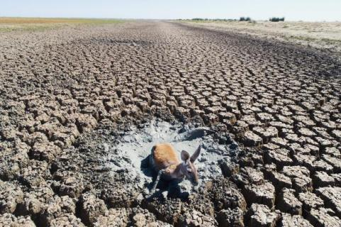 australia-drought-1092516960_orig